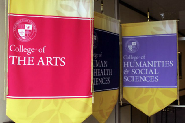 university flag and banner