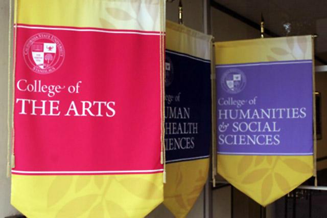university flag and banner